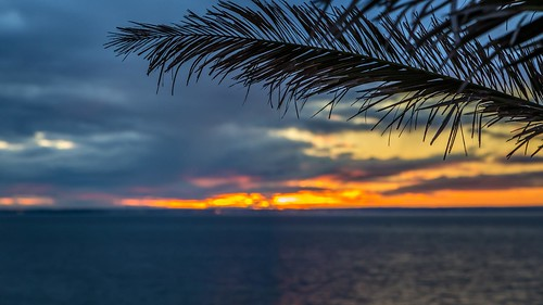 Curlewis Sunset-14