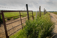 Farmers fence - Explored 14/'07/17 No. 107 Thanks! (jimj0will) Tags: fence fencefriday overgrown path trail barbedwire rural scene fields gate posts grass green line