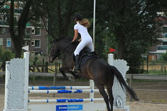 IMG_8113 (Bas & Emily) Tags: horse jump jumping horsejumping amazone ruiter kampioenschap nature natuur paard springen rsva