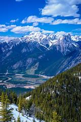 Mountains of the Sawback Range and the Bow Valley: Banff National Park, AB (Martin Thielmann) Tags: ab banffnationalpark bowriver bowvalleywetlands mtbrewster mtcory mtedith mtlouis sulphurmountainnorthwestsummitview transcanadahighway vermillionlakes snowcladsawbackrange