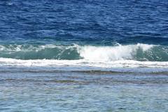 DSC_0192 (russellfenton) Tags: egypt marsaalam nikon nikon7200 7200 corayabeach steigenberger snorkelling sea boat