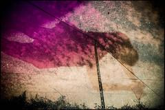 20160824-069 (sulamith.sallmann) Tags: blur cotentin effect effekt filter folientechnik france frankreich lahague manche normandie strommast unscharf fra sulamithsallmann