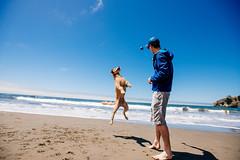 Jump (DEARTH !) Tags: chuckit bayarea chase roadtrip dearth fetch california tennisball jump ocean muirbeach dog marincounty blue northerncalifornia beach pacific wetdog