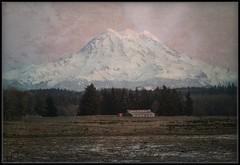Emotions of Winter (Ernie Misner) Tags: f8andclingtohope mountrainier mountain washington roywashington roy erniemisnernikon d800 nikon nik capturenx2 topaz texture