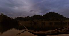 blue hour (Gunawan Huang) Tags: bluehour mountain lake tree water sky clouds java semeru indonesia simple sunset