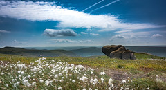 lazy hazy (Phil-Gregory) Tags: hill mountain nikon d7200 peakdistrict national park fly field sky clouds vista rocks cotton grass cottongrass wide angle ultra nature natural