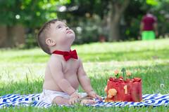 Ashlan (Pablo Urrea) Tags: bebe pablourrea vida niño colores familia amor caracas