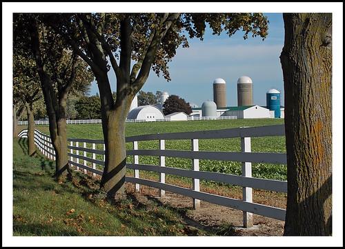 Braun Farm in Saline, Michigan For fence Friday