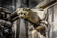 (SMB-PHOTOGRAPHIC) Tags: gargoyle gargouille gargouilles gargoyles démon daemon dark gothique architecture church eglise cathédrale cathedral death