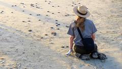 IMG_0154.1 (mikehogan2) Tags: padreisland nationalseashore kempsridley sea turtles texas release