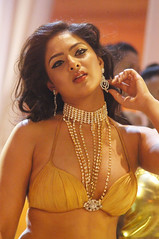 Indian Actress NIKESHA PATEL Hot Sexy Images Set-1 (4)
