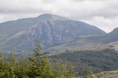 Sgùrr nan Ceannaichean (Francis Mansell) Tags: crag mountain hill tree forest scotland westerross cliff sgùrrnanceannaichean scottishhighlands creaganardaich gully achnashellach glencarron