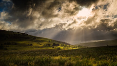 searching. (akh1981) Tags: cumbria landscape lakedistrict clouds wideangle outdoors valley sun beams nikon manfrotto nisi trees travel uk green