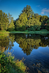 Early morning, Norway (Vest der ute) Tags: xt2 norway rogaland haugesund reflections mirror trees bluesky water puddle waterscape grass earlymorning fav25