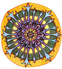 Cornflower Mandala (molossus, who says Life Imitates Doodles) Tags: zentangle zentangleinspiredart pittbigbrushpen indiaink