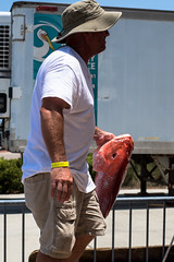 DSC_6564 (capt_tain Tom) Tags: redsnapper fish fishing redfish gulfofmexico gulfport fishingrodeo