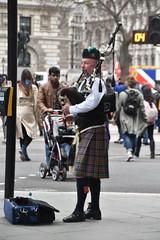 Busker at Westminster (Manoo Mistry) Tags: nikon tamron tamron18270mmzoomlens nikond5500bodyonly london westminster people busker piper pipe bagpipe kilt