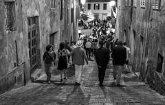 Siena, July 2, 2017 going to Giraffa (pigianca) Tags: italy siena palio paliodisiena contradadellagiraffa piazzaprovenzano streetphoto urbanphoto monochrome blackwhite leicaq