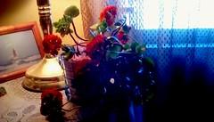 Calandiva plant! (Maenette1) Tags: calandiva plant red flowers lamp photo table window menominee uppermichigan flickr365