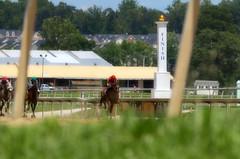"2016-07-10 (17) r3 Daniel Centeno on # 3 Gursky (JimFleenor) Tags: photos photography maryland md marylandhorseracing laurelpark horseracing jockey جُوكِي ""赛马骑师"" jinete ""競馬騎手"" dżokej jocheu คนขี่ม้าแข่ง jóquei žokej kilparatsastaja rennreiter fantino ""경마 기수"" жокей jokey người horses thoroughbreds equine equestrian cheval cavalo cavallo cavall caballo pferd paard perd hevonen hest hestur cal kon konj beygir capall ceffyl cuddy yarraman faras alogo soos kuda uma pfeerd koin حصان кон 马 häst άλογο סוס घोड़ा 馬 koń лошадь"