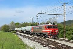 363 006, Rodik,  6 May 2017 (Mr Joseph Bloggs) Tags: sz sž bahn railway railroad train treno vlak 363 006 363006 koper rodik slovenia slovenske freight cargo merci brigitte