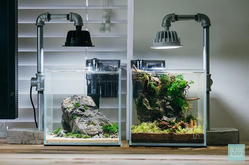 glass aqua nano planted tank a photo on flickriver