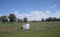 152 Bulgandramine Road, Peak Hill NSW