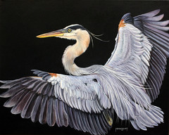 A work of art... (John's Love of Nature) Tags: johnkelley greatblueheron