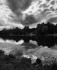 Last house on the Left (sephrocker) Tags: iphonese blackandwhite mono monochromatic landscape lake reflections clouds silverefx