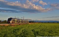 ETR425 022 (MattiaDeambrogio) Tags: train trains treno treni etr425 jazz borgolavezzaro