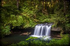 Upper Butte Creek Falls (Photography M.D.) Tags: scottsmills waterfall buttecreekfalls trees green