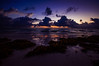 ... washed up by the ocean (mariola aga) Tags: puntacana dominicanrepublic atlanticocean morning dawn sky sunrise light glow clouds ocean water waves shoreline beach seaweed wet sand reflection wideangle sigma1020mm saariysqualitypictures