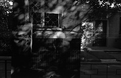 House of the Mind (horilyc) Tags: 2013 bw чб плёнка film fujicast801 r09 fujinon5516 мульт albnegru photography analog analogue noirblanc schwarzweis blackwhite blackandwhite agfaapx100 мульти даблэкспо даблэ дабл mult päällekkäisvalotus päällekkäiskuva dubbelexponering vícenásobnáexpozice doppiaesposizione duplaexposição dvigubaekspozicija мультиэкспозиция mehrfachbelichtung multiple multipleexposure multi doubleexposure multy multiexposure doppelbelichtung двойнаяэкспозиция agfafilms