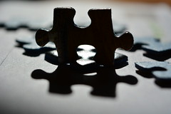 Silhouette (rawdonfox) Tags: nikond5200 nikon rawdonfox macro jigsaw piece pieces macromondays