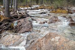 1525 Fast Water (paule48) Tags: alberta banff canada morainelake landscape creek flowing water motionblur