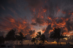 Sunrise (robertjamesstarling) Tags: fort lauderdale sunrise trees waves sea clouds wind colours
