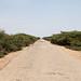 Somalia_ADRA_June2017-30