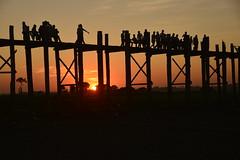 _DSC6558 (Tartarin2009) Tags: myanmar mandalay ubein bridge pont sunset crépuscule silhouettes travel nikon d600