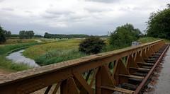 Bruggenroute Moerputten/Bridge route Moerputten (truus1949) Tags: wandelen natuur natuurgebied landschap halvezolenlijntje