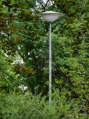 A lamppost lurking in the trees (sander_sloots) Tags: lamppost posttop lantaarnpaal lantern mannheim germany vulkan streetlight streetlamp straatverlichting straatlantaarn streetlights luminaire lampadaire trees bomen