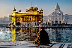 Golden Temple (Valdas Photo Trip) Tags: india punjam amritsar goldentemple sikh temple religion