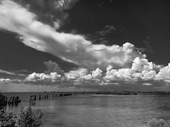 Gandy Bridge (Beth Reynolds) Tags: clouds landscape summer bay salt bridge tampa blue afternoon florida sealevel monochrome