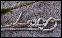 KNOTS.jpg (o.penet) Tags: elements honfleur matin early normandy noeuds knots