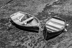 Brixham Boats (_John Hikins) Tags: bw black blackwhite blackandwhite harbour street white torbay d5500 devon nikon nikkor 50mm 50mm18 monochrome brixham bokeh boats boat