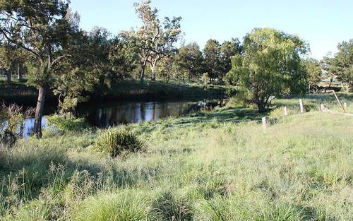 Lot 52 Sawyers Gully Road, Tenterfield NSW