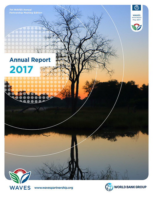 WAVES Annual Report 2017 cover