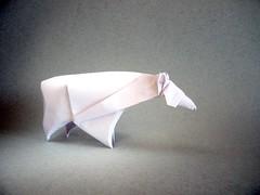 Oso Polar - Daniel Naranjo (Rui.Roda) Tags: origami papiroflexia papierfalten urso ours bear oso polar daniel naranjo