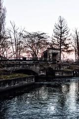Canale della Muzza (u.giommetti) Tags: colore color campagna country natura nature canale river riflessi reflections inverno winter alberi trees canaledellamuzza italia italy lombardia lodigiano ponte bridge