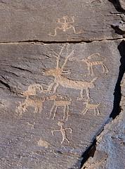 Petroglyphs / Sand Island Site (Ron Wolf) Tags: anthropology archaeology bearsearsnationalmonument nationalpark nativeamerican sandisland anthromorph anthropomorph bighornsheep deer frog panel petroglyph rockart zoomorph utah