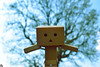Danbo (13) @danbo/данбо2 (Robert Krstevski) Tags: danbo danboard danbostory danbomacedonia danboamazon danborou 365danbo photography photooftheday photograph popular photo photographer nature natural naturelovers naturalworld flora floral krivapalanka macedonia balkan europe colors filters nikond3300 nikon revoltech robot robertkrstevskiblogspotcom robertkrstevski tree trees данбо природа